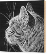 Basking II Wood Print