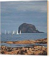 Bass Rock And Sail Boats Wood Print