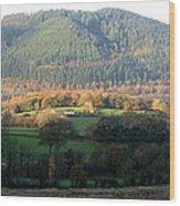 Bassenthwaite Wood Print
