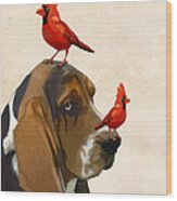 Basset Hound And Red Birds Wood Print
