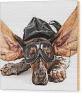 Basset Hound Dog Aviator Wood Print