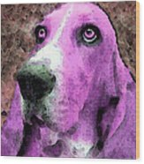 Basset Hound - Pop Art Pink Wood Print