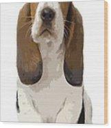 Basset Hound Puppy Wood Print