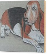 Bassett Puppy Wood Print by Steve Jorde
