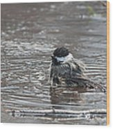 Bath Time Wood Print