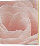 Bath Time Rose Soap Macro Wood Print