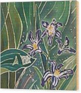 Batik Detail - Pushkinia Wood Print