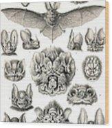 Bats Bats And More Bats Wood Print