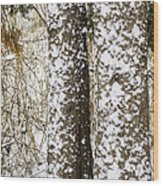 Battered By Winter Blizzard Wood Print