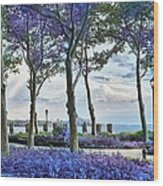 Battery Park In The Spring Wood Print