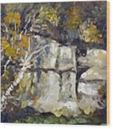 Battle Creek Bluff Wood Print