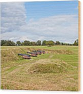 Battle Of Yorktown Battlefield Wood Print by John M Bailey