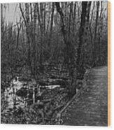 Battle Road Boardwalk Wood Print