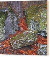Battlefield In Fall Colors Wood Print