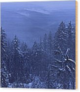 Bavarian Forest In Winter Wood Print by Ulrich Kunst And Bettina Scheidulin