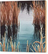 Bay At Sunset Wood Print