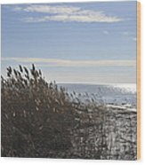 Bay Breeze In Winter Wood Print