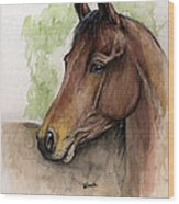 Bay Horse Portrait Watercolor Painting 02 2013 A Wood Print
