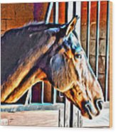 Bay In Stall Wood Print