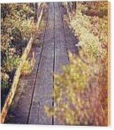 Bay Lands Walk Wood Print