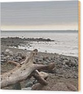 Bay Of Fundy Wood Print