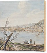 Bay Of Naples From Sea Shore Wood Print