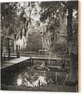 Bayou Evening Wood Print