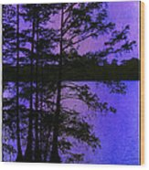 Bayou In Moonlight Wood Print