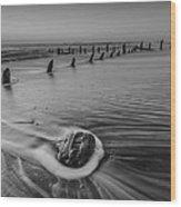 Beach 8 Wood Print