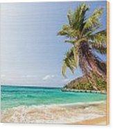 Beach And Palm Tree Wood Print
