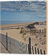 Beach At Cape Henlopen Wood Print