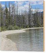 Beach At Redfish Lake Wood Print