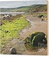 Beach At Robin Hoods Bay Wood Print by Deborah Benbrook
