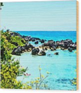 Beach At St. George Bermuda Wood Print