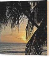 Beach At Sunset 1 Wood Print