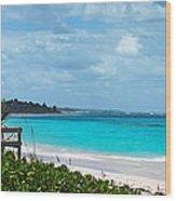 Beach At Tippy's Wood Print