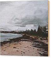 Beach At Victor Wood Print