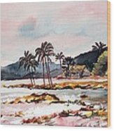 Beach At Waikiki Wood Print