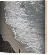 Beach Comber Wood Print