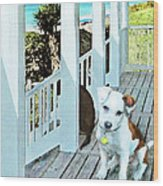 Beach Dog 1 Wood Print