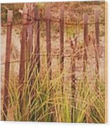 Beach Dune Fence At Cape May Nj Wood Print