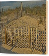Beach Fence Wood Print by Susan Candelario