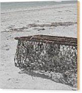 Beach Finds Wood Print