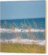 Beach Front 001 Wood Print