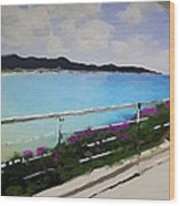 Beach Front View Wood Print