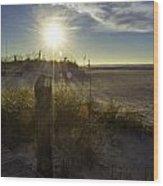 Beach Glare Wood Print