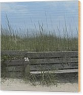 Beach Grass And Bench  Wood Print by Cathy Lindsey