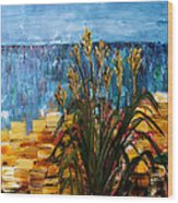 Beach Grass Evanston Beaches Wood Print by Gregory Allen Page