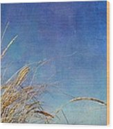 Beach Grass In The Wind Wood Print