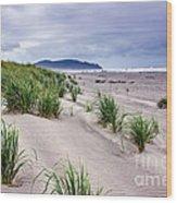 Beach Grass Wood Print by Robert Bales